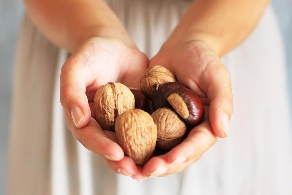Девушка держит грецкие орехи в руках