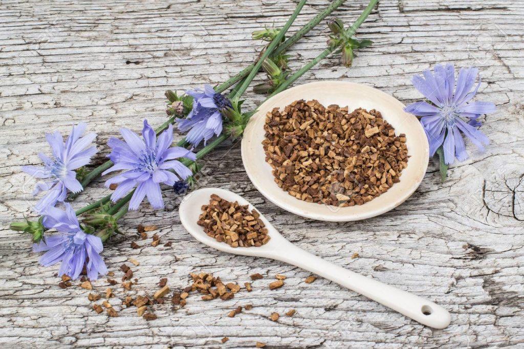 Кореньцикория, порезанный кусочками, в ложке и тарелке, и цветы цикория на деревянном столе