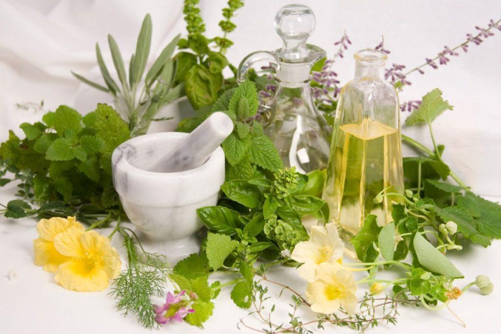 Различные травы, ступка, пестик, масло в бутылке на белом фоне