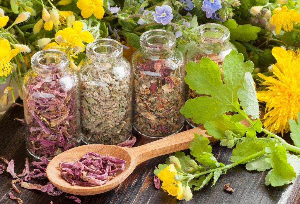 Сухие травы в стеклянных банках и в деревянной ложке на деревянном столе