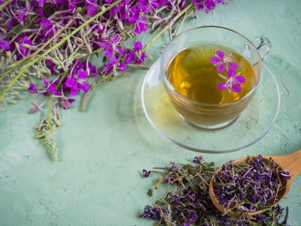 Иван-чай свежий, сухой и заваренный в чашке на столе